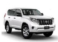 Toyota 4x4-Toyota 4x4 Export-Toyota 4x4 Afrique-Toyota 4x4 Land Cruiser-Toyota 4x4 Afrique Export-Toyota 4x4 Hilux-Toyota 4x4 Prado Export-Toyota 4x4 Export-Toyota 4x4 Export-Toyota 4x4 Export-Toyota 4x4 Afrique-Toyota 4x4 TD-Toyota 4x4 diesel-Toyota 4x4 petrol-Toyota 4x4 Land Cruiser Export-Toyota 4x4 Export TD-Toyota 4x4 Land Cruiser 4x4 Export-Toyota 4x4 Export-Toyota 4x4 pick-up-Toyota 4x4 Export-Toyota 4x4-Toyota 4x4 Land Cruiser Export-Toyota 4x4 Export petrol-Toyota 4x4 Export 4x4-Toyota 4x4 Export-Toyota 4x4 Land Cruiser-Toyota 4x4 pick-up-Toyota 4x4 Export-Toyota 4x4 diesel-Toyota 4x4-Toyota 4x4 Export-Toyota 4x4 Expo